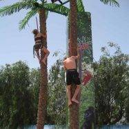 Coconut Tree Climb at AquaLanz
