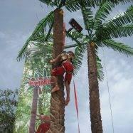 Coconut Tree Climb at AquaLanz